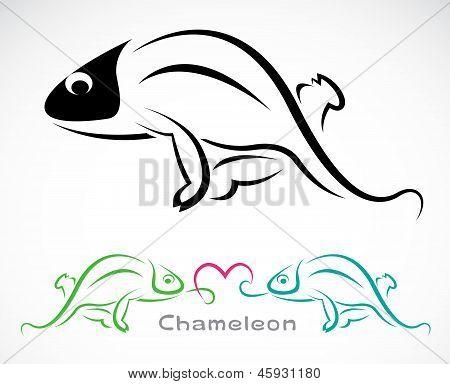Vector image of an chameleon