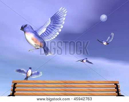Several beautiful easter blue birds flying upon a wood bench by cloudy full moon night poster