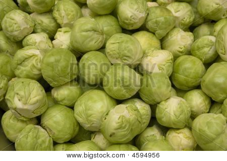 Lots Of Brussels Sprouts