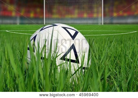 the soccer ball in the grass