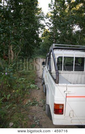 Jeep Safari - Nepal