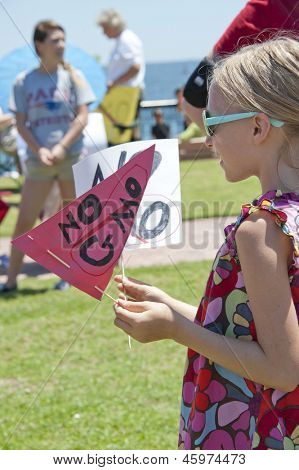 PENSACOLA, FL - MAY 25: Protesters rally in Pensacola, FL on May 25, 2013 to show support for worldwide