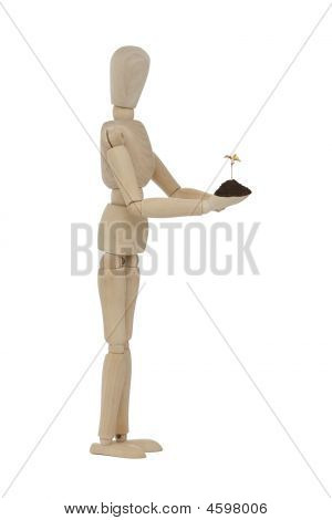 Wooden Man With Small Tree