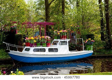 Boat Covered With Dutch Tulip Flowers