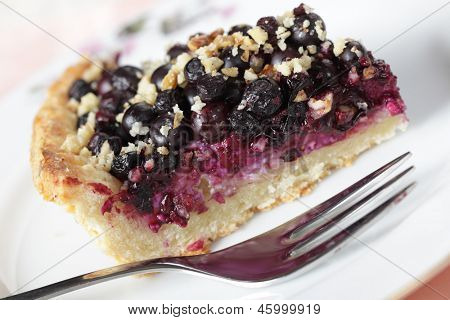 Slice of bilberry pie with walnuts on a plate