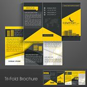 Professional business three fold flyer template, corporate brochure or cover design can be use for publishing, print and presentation. poster