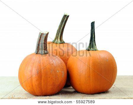 Three Pumpkin On Table
