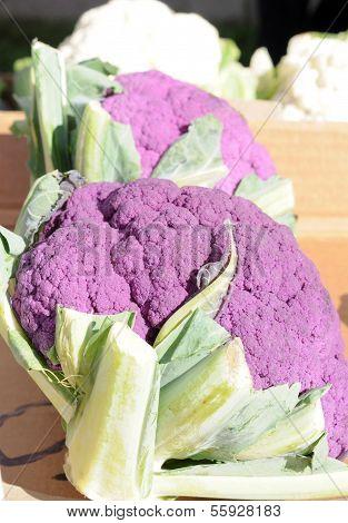 Purple Cauliflower In Farmer Market