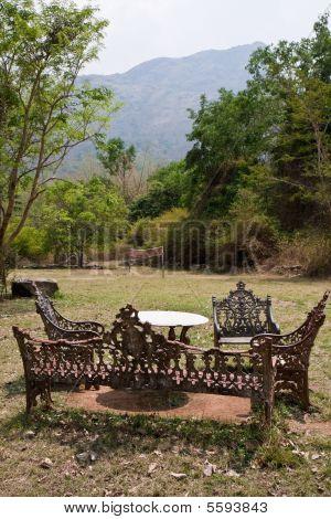 Yard at a Jungle Resort
