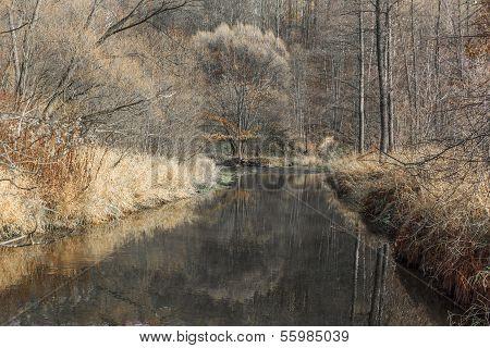 River In November
