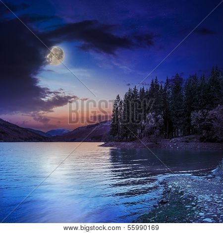 Autumn Mountain Lake In Coniferous Forest At Night