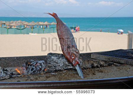 Fish on barbecue on beach, Benalmadena, Spain.