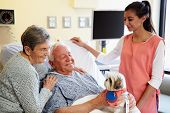 Pet Therapy Dog Visiting Senior Male Patient In Hospital poster