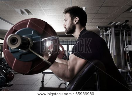 biceps preacher bench arm curl workout man at fitness gym poster