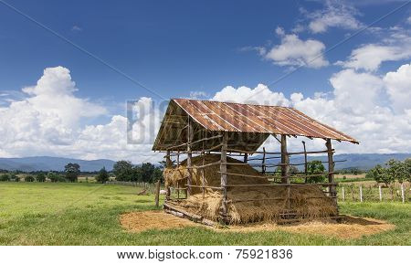 Straw Farmhouse In The Meadow