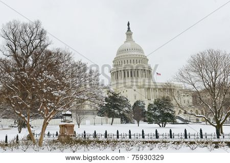 Washington DC in Winter - The Capitol Building in snow