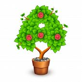 Isolated tree with flowers in clay pot. In the form of letter A. Vector illustration in eps10 poster