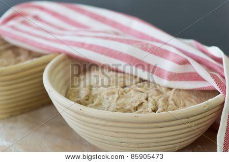 Rising bread dough in banneton