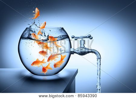 wasted water - waterless risk concept, goldfishes in the bowl poster