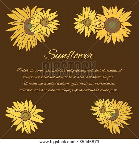 Sunflower vector greeting card on the dark background