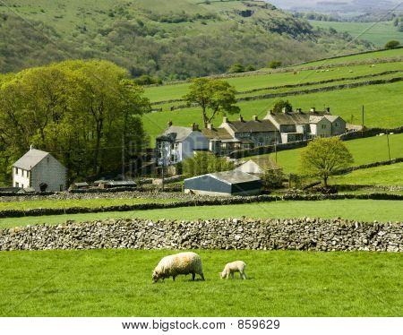 farm peak district national park derbyshire england