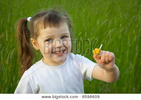 Little Girl Has Torn Off At Chamomile All Petals Except One