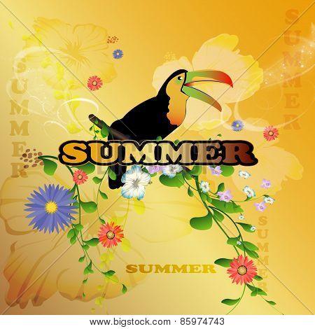 Summer desing