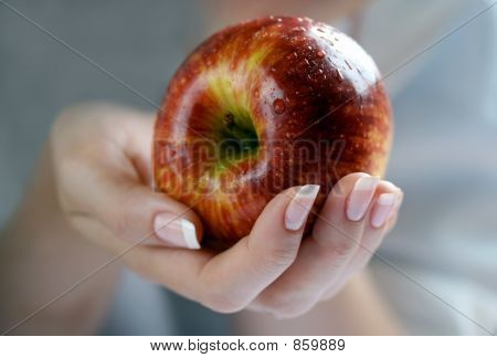 Apple In A Female Hand
