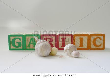 garlic6