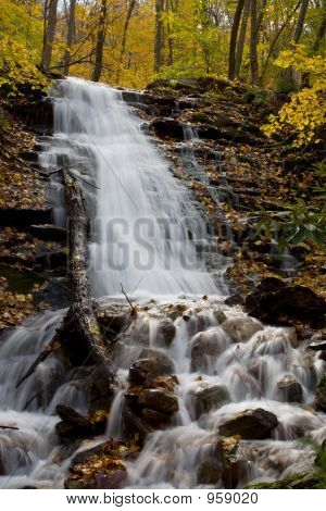 Waterfall And Foliage 001