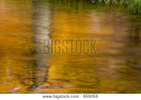 Golden Reflection In The Stream 012