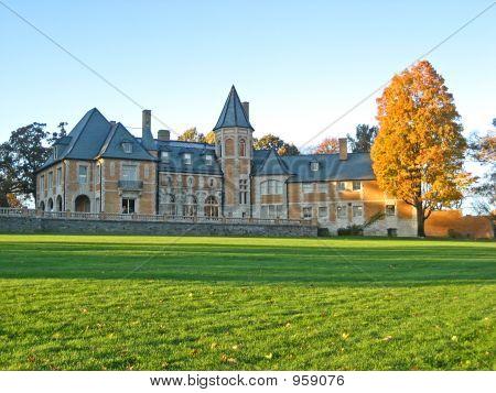Orange Castle, Orange Tree 3