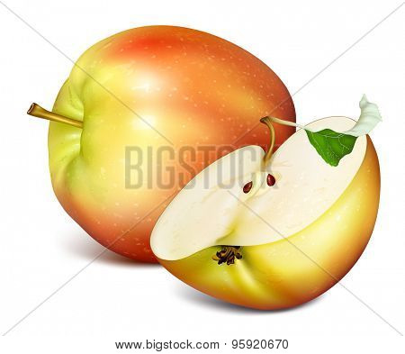 Whole apple and half cut apple. Vector illustration