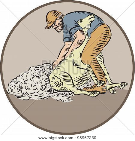 Etching engraving handmade style illustration of a farmworker farmer farmhand using shears shearing wool from sheep set inside circle on isolated background. poster