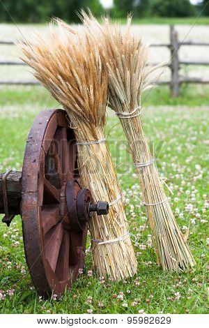 Wheel Of Wooden Cart And Sheaves Of Wheat Ears. Rustic Style.