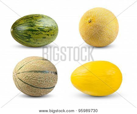 Set Collection Of Melon. Cantaloupe, Galia,  Piel De Sapo And Honeydew. Isolated On White Background