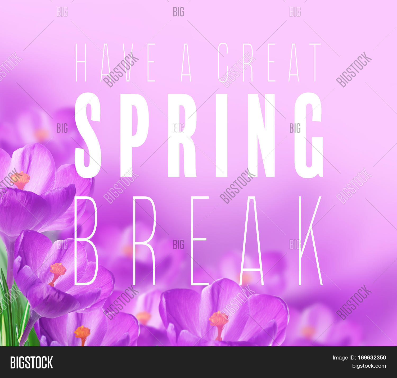 Text Have Great Spring Image Photo Free Trial Bigstock