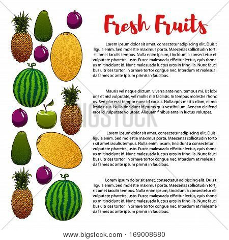 Fruits banner or poster with information on fruits nutrition with pineapple, melon and watermelon, exotic tropical avocado or pear, apple and plum. Vector fresh farm organic ripe fruit agriculture harvest