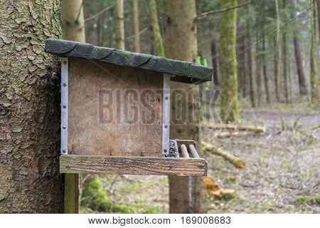 Closeup of a birdhouse. Birdhouse in the forest