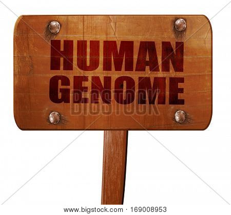 human genome, 3D rendering, text on wooden sign