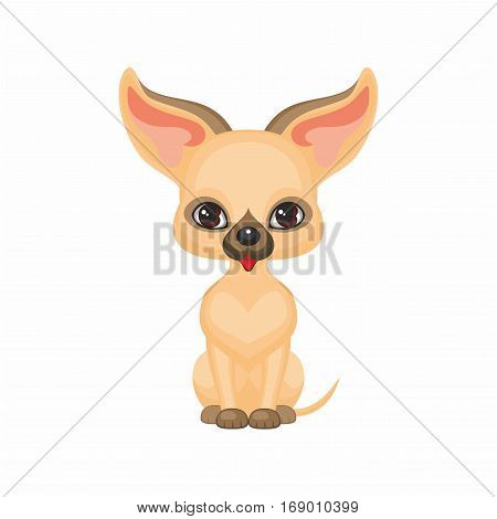 small dog Chihuahua. Vector image of a cute purebred dogs in cartoon style.