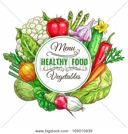 Vegetable and healthy food menu poster. Fresh carrot, tomato, pepper, onion and broccoli, cabbage and garlic, cucumber and asparagus, cauliflower, kohlrabi and radish. Vegetarian food, organic shop design