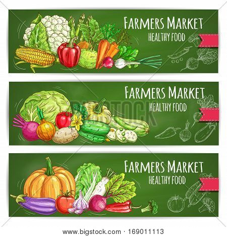 Vegetables sketch banners set of farmer market veggies. Vector corn and garlic, zucchini squash and beet, pumpkin and cauliflower, radish daikon, broccoli, bell and chili pepper, green onion leek, eggplant. Organic fresh vegetarian food
