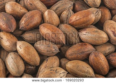 Natural Stack Of Peacan Nuts Patterns And Textures