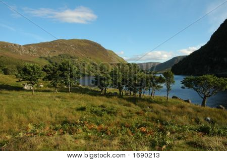 Mountains And Trees, Scotland