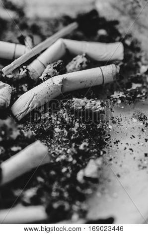 Cigarette butts on a gray dirty background. Black and white photo