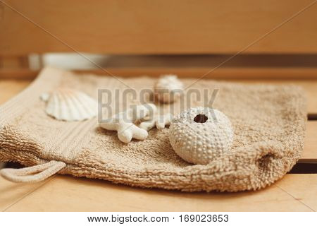 Shells for hot massage in spa salon close-up. Set of special seashells for warming and relaxing procedures. Health and body care, alternative medicine, treatment background concept