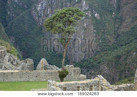 Machu Picchu ruins in Peru. UNESCO World Heritage Site from 1983