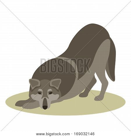 wolf vector illustration style Flat  side front