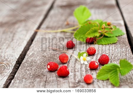 Fresh organic strawberry on wooden background selective focus. Summer concept